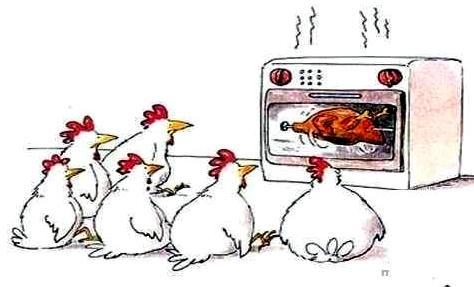 csirke horror