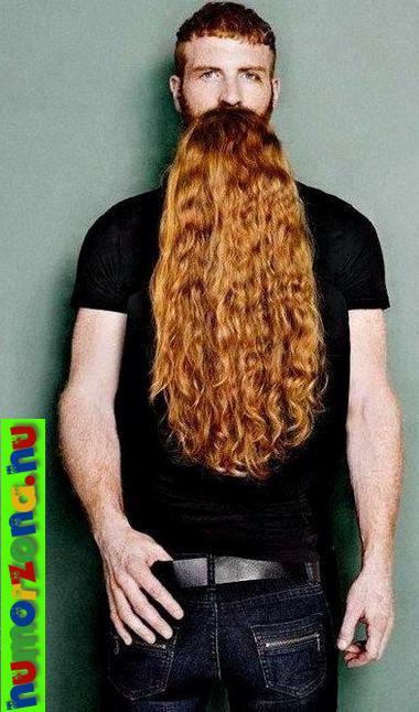 vörös szakáll