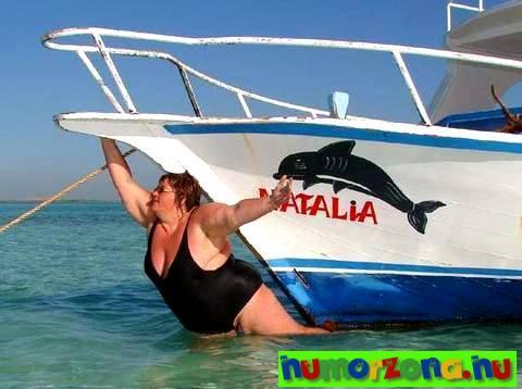 delfinke