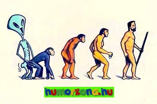 evolució