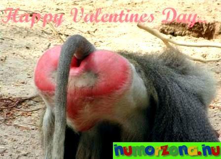 Happy-Valentines-Day-...