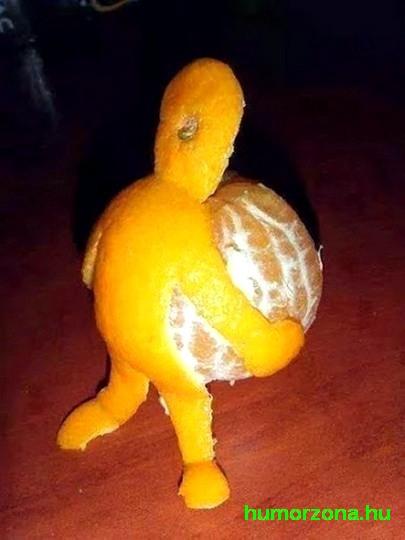 humorzona.hu.narancs
