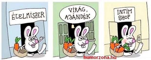 humorzona.hu-bevásárlás