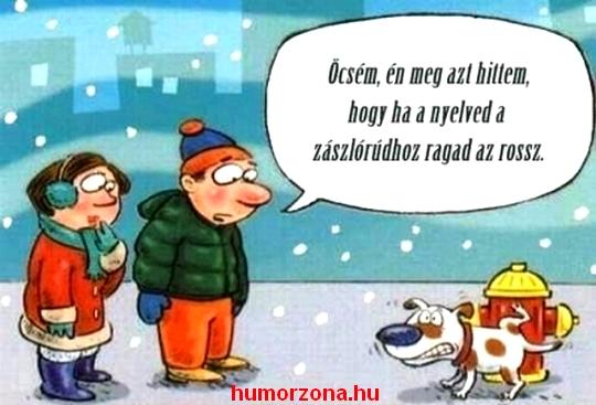 humorzona.hu-fagyas