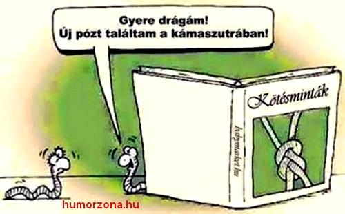 humorzona.hu-kukac