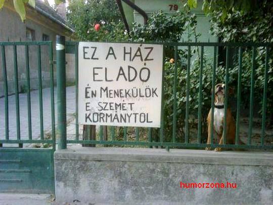 humorzona.hu-menekül