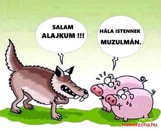 humorzona.hu-muzulman1