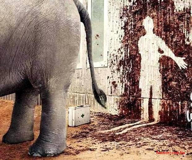 humorzona.hu-elefánt