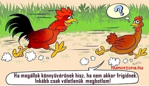 humorzona.hu-kakas